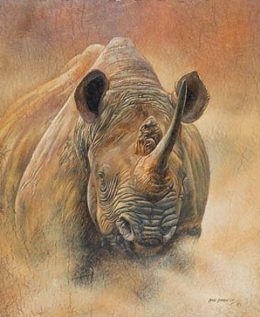 Rhino Chiropractic